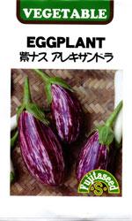 紫ナス アレキサンドラ