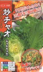 炒チャオ(ちゃおちゃお)