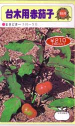 台木用赤茄子