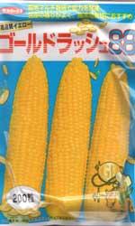 ゴールドラッシュ88