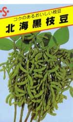 北海黒枝豆