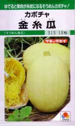 金糸瓜(そうめん南瓜)