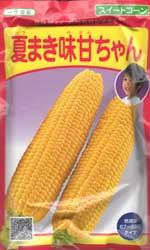 夏まき味甘ちゃん