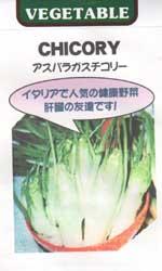 アスパラガスチコリー