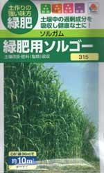 緑肥用ソルゴー