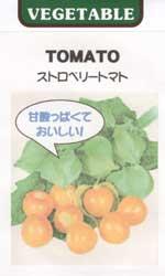 ストロベリートマト(食用トマトホウズキ)