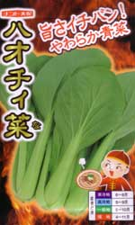 ハオチィ菜
