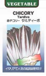 タルディーボ