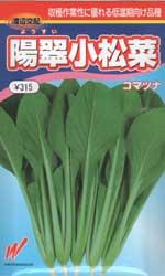 陽翠小松菜