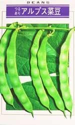アルプス菜豆