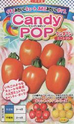 CandyPop(キャンディポップ) マンダリン