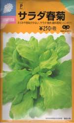 サラダ春菊