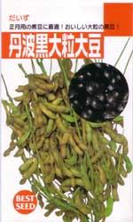丹波黒大粒大豆