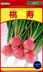 桃寿(とうじゅ)