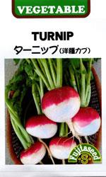 ターニップ(洋種カブ)